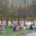 Postcard Paris: Jardin du Luxembourg escape