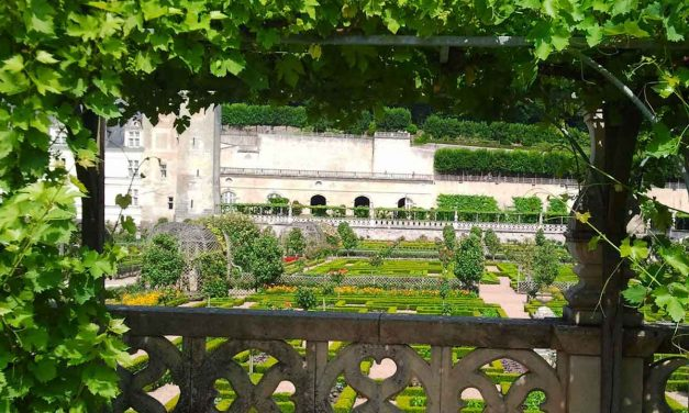 A must-visit: France's Villandry castle gardens