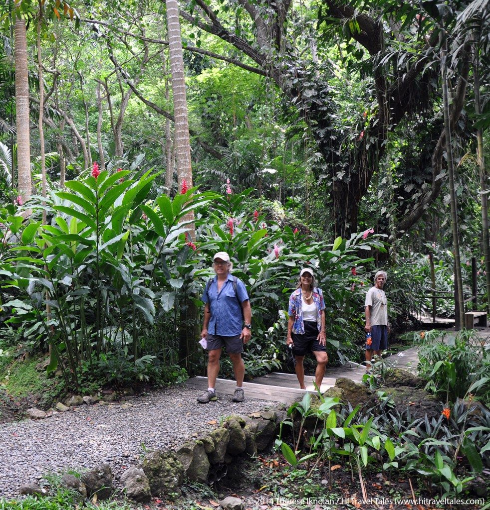 Wandering the lush tropical paths through Fiji's Garden of the Sleeping Giant.