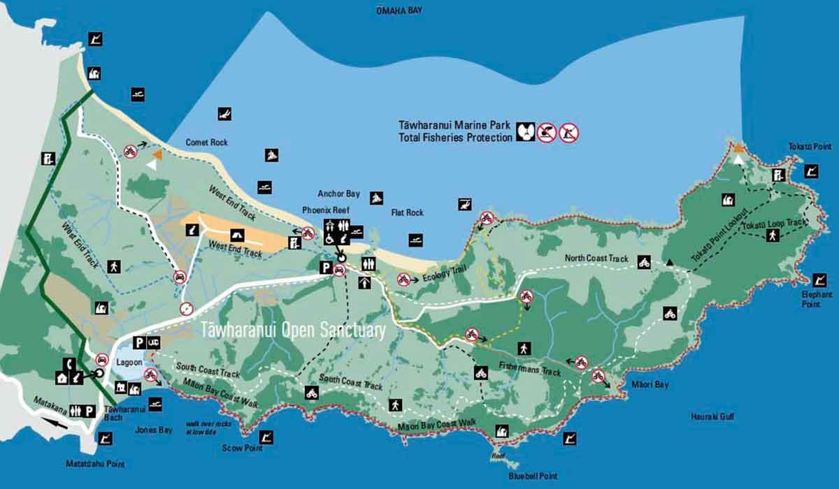 tawharanui regional park trail map