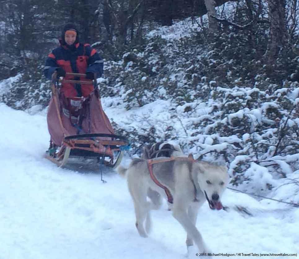ExOfficio Calluna Fleece Hoody dog sledding