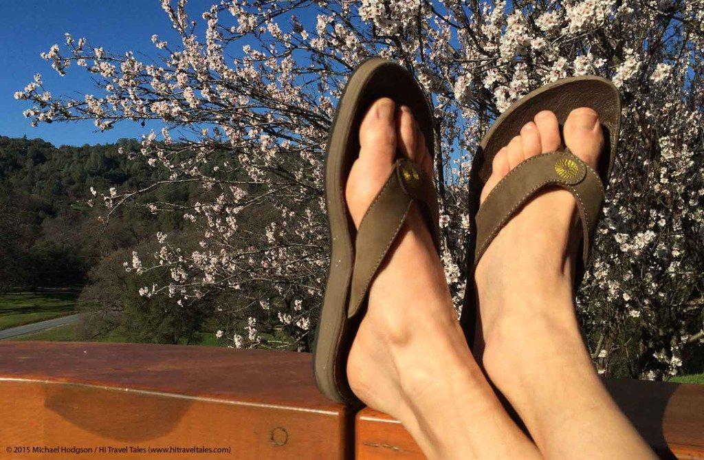 Bogs Hudson leather flip resting