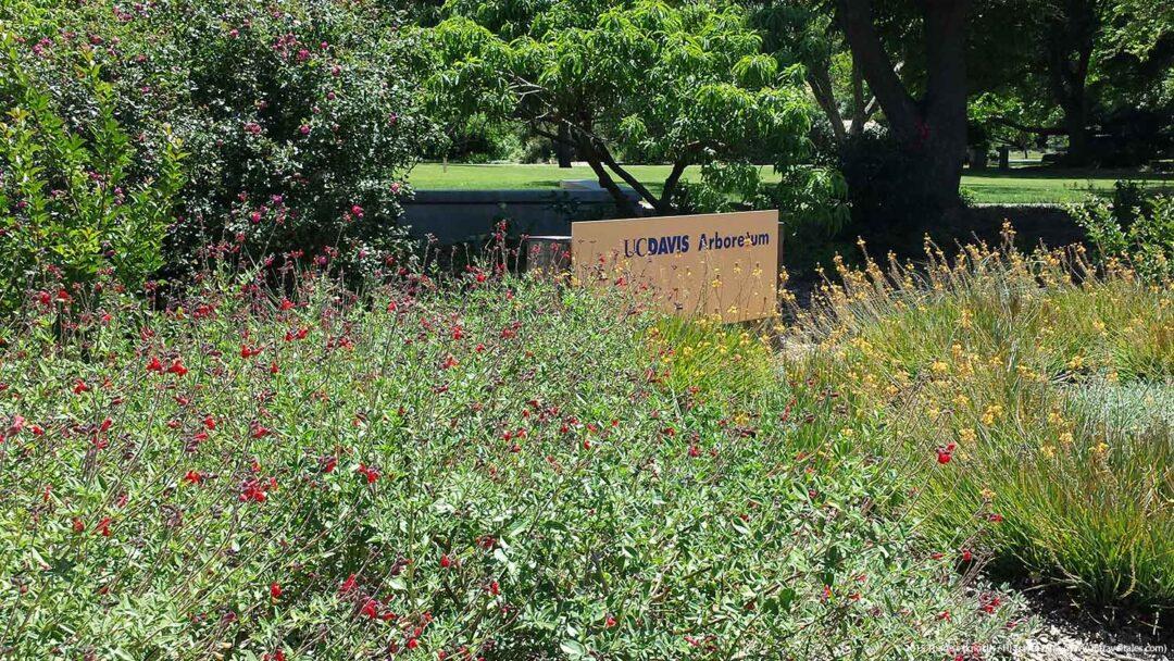 UC Davis Arboretum entrance sign
