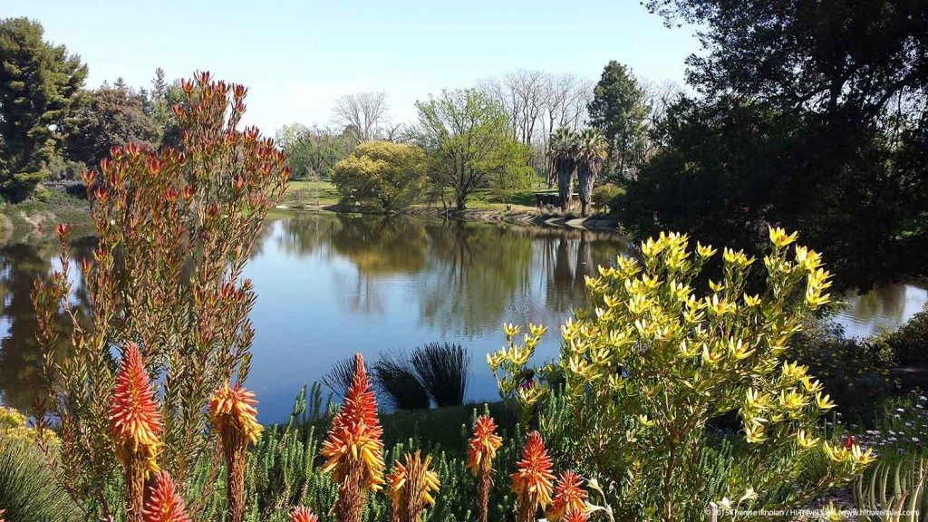 UC Davis Arboretum is one of the US top rated botanical gardens.