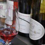 Loire Valley wine tasting experience is memorable