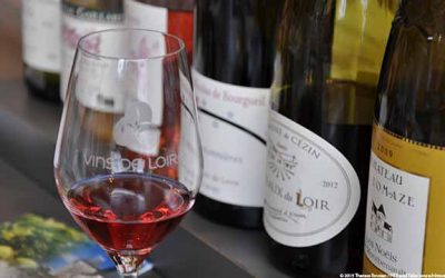 Loire Valley wine tasting experience is memorable