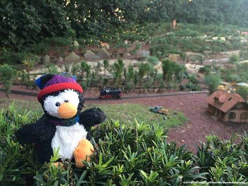 Pingo backstage and unauthorized at Disney World Epcot - Teddy & Friends: Perfect travel buddies