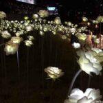 Dongdaemun Design Plaza delights the senses