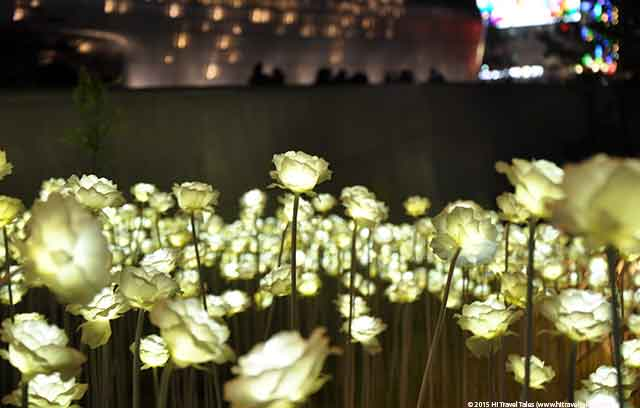 Dongdaemun Design Plaza Roses At Night