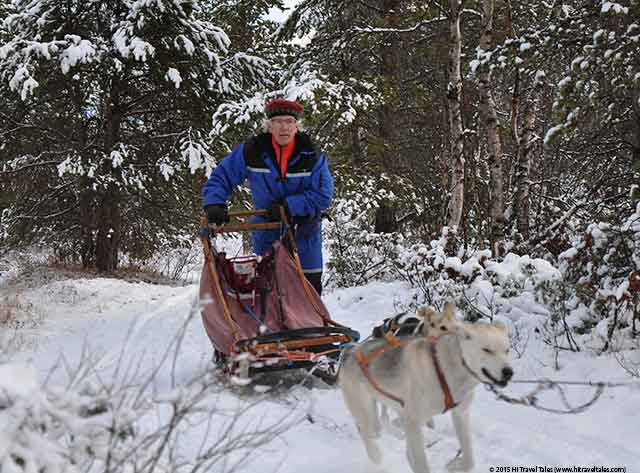 Dog sledding in Norway mushing with Michael