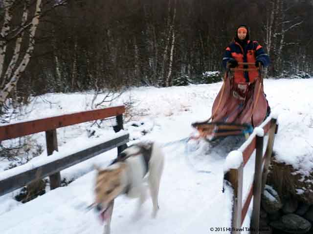 Dog sledding in Norway with Therese mushing her own sled.
