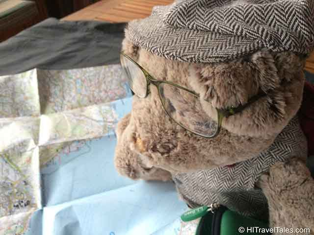 LL Bean DuraReader glasses worn by one of our stuffed animal family to help him study the map