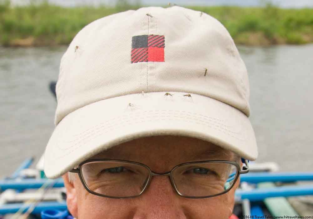 Protect yourself from Zika -- mosquitos crowd my baseball cap on a river trip in Alaska