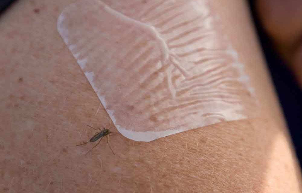 Top 3 tips to protect yourself from Zika