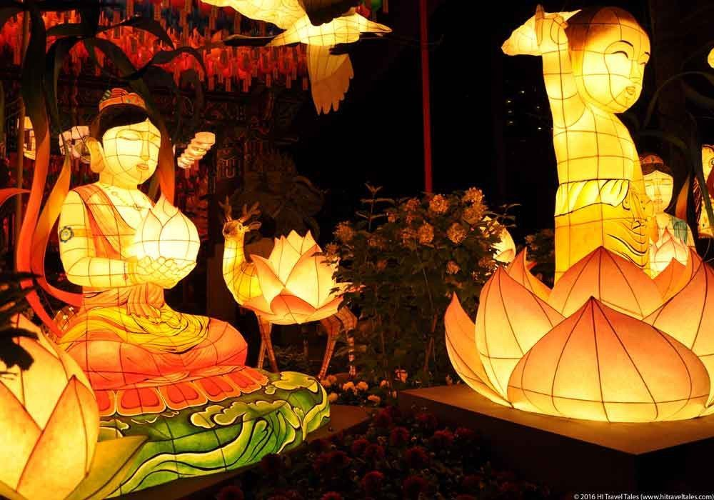 Buddha's birthday festival and lotus lantern displays