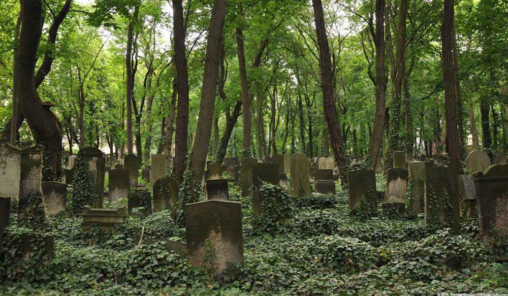 Prenzlauer Berg Travel Guide Jewish Cemetery
