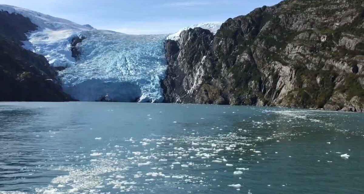 Fantastic glacier cruise in Prince William Sound