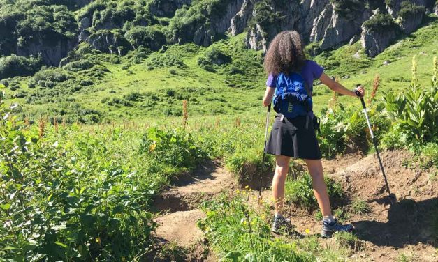 Black Diamond Alpine Carbon Z poles are lightweight travel buddies