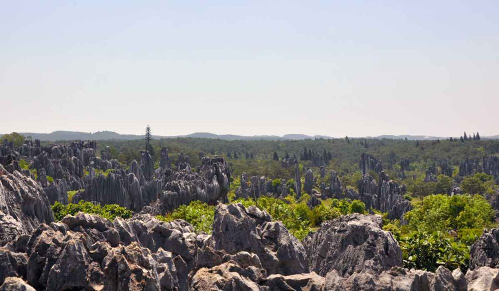 Stone Forest overlook with a fantastic view.