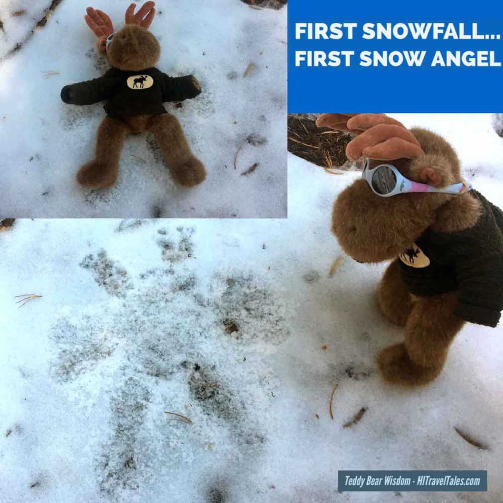 Mukluk makes his very first snow angel.