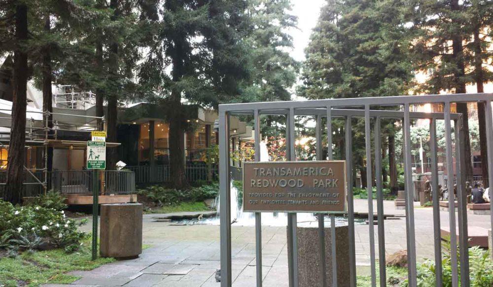 Entrance to TRANSamerica Redwood gardens.