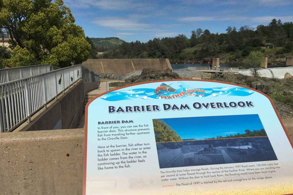 Feather River Fish Hatchery also flooded in 1997 at the barrier dam.