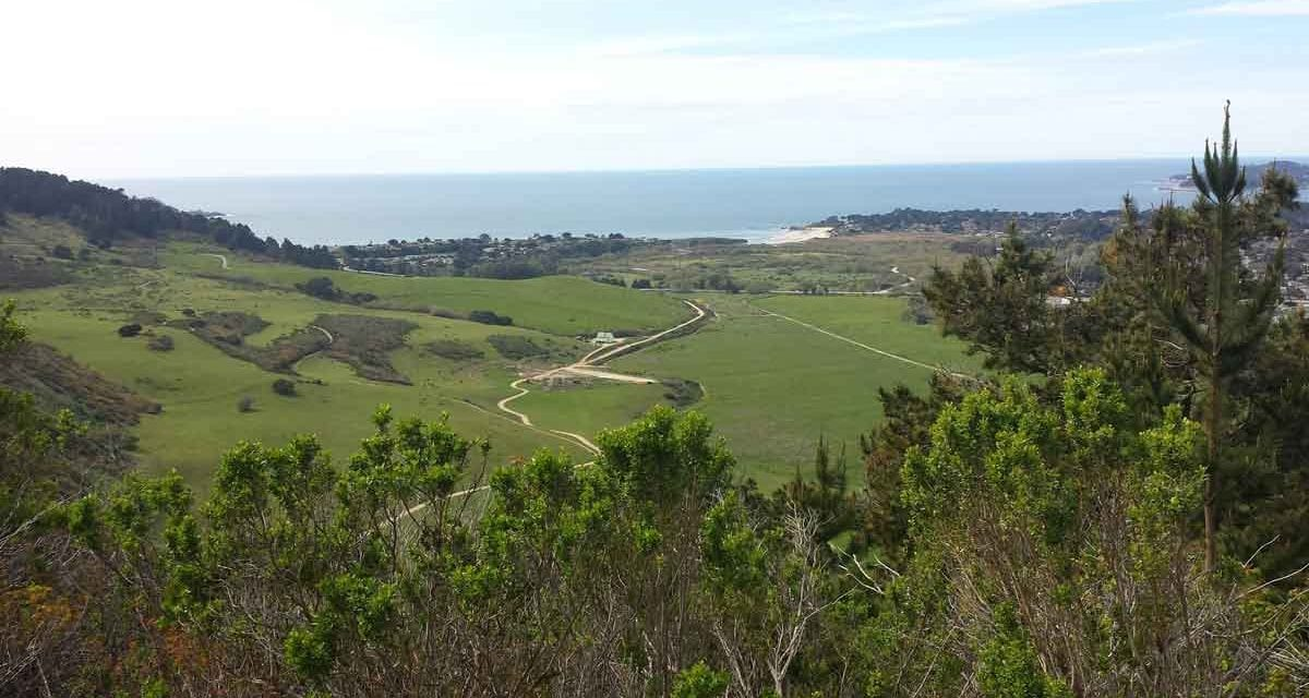 The best hike in Carmel: Palo Corona Park trails and views