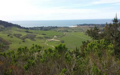 The best hike in Carmel: Palo Corona Regional Park trails and views
