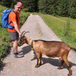 Pacsafe Venturesafe X30: Versatile anti-theft adventure backpack