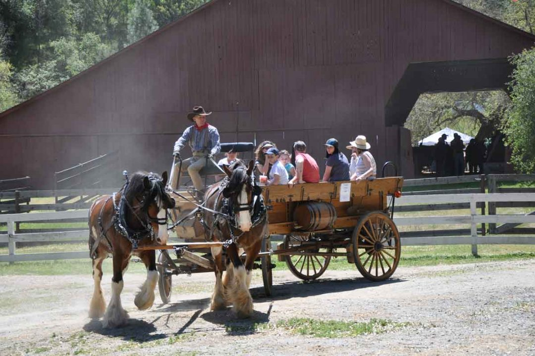 Wagon rides at South Yuba River State Park.