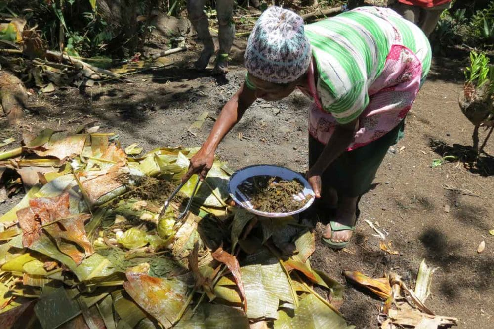 Preparing food in an earth oven in Papua New Guinea.