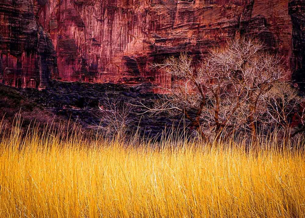 Big Bend in Zion