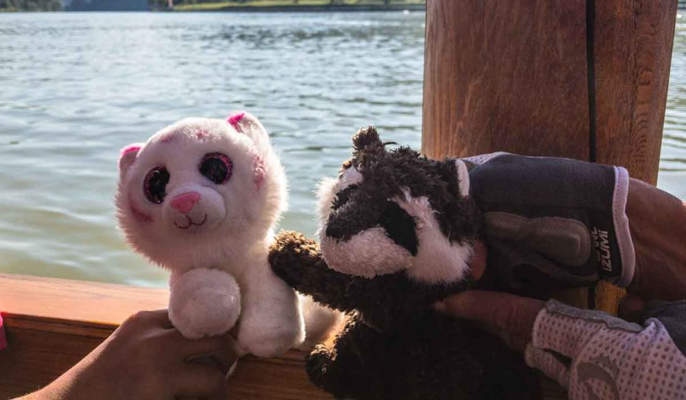 Rocky meets Pinkie on a ferry across the Danube.