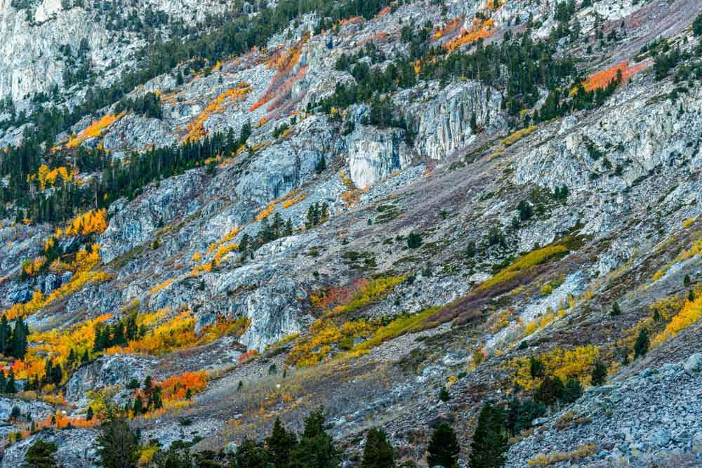 Fall colors in Sabrina Basin.