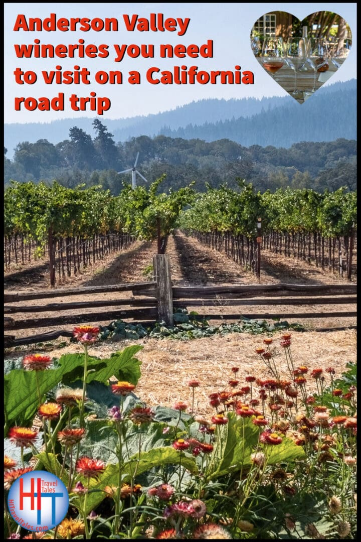 Anderson Valley Wineries You Need To Visit On A California Road Trip