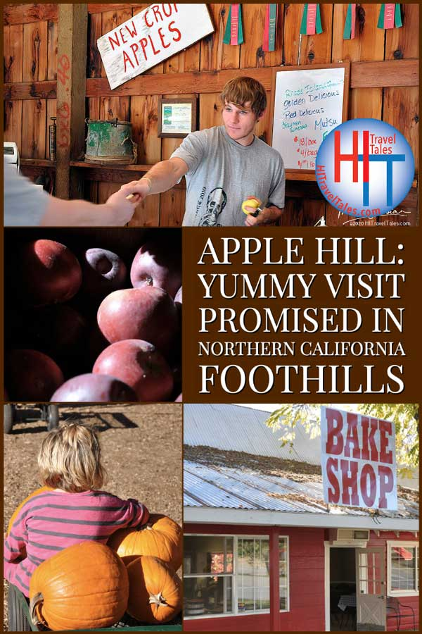 Apple Hill Yummy Visit Promised In Northern California Foothills
