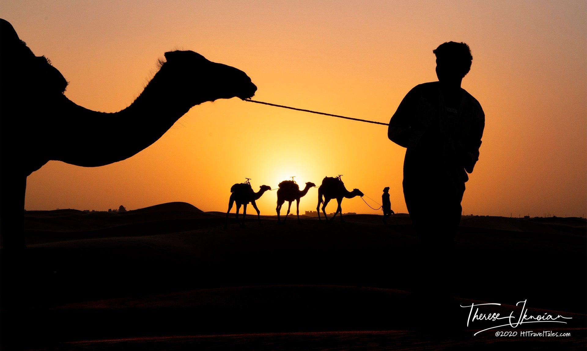 Camel Silhouette Sahara Washington Post Travel Photo Contest Award Winner