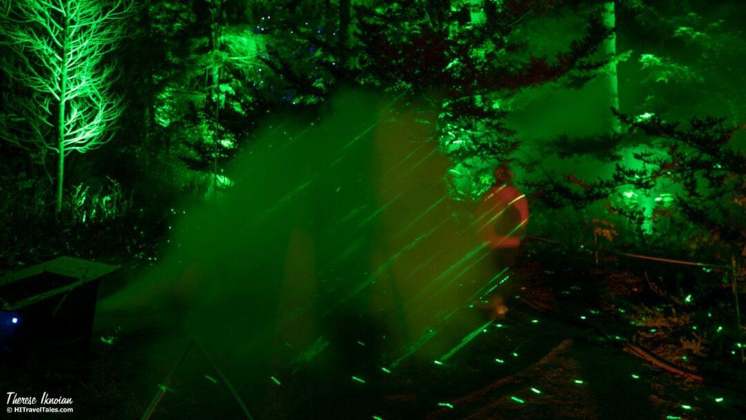 Christmas Garden Laser Garden
