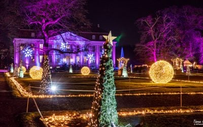 Christmas at the Tierpark in Berlin – a shining Christmas wonderland