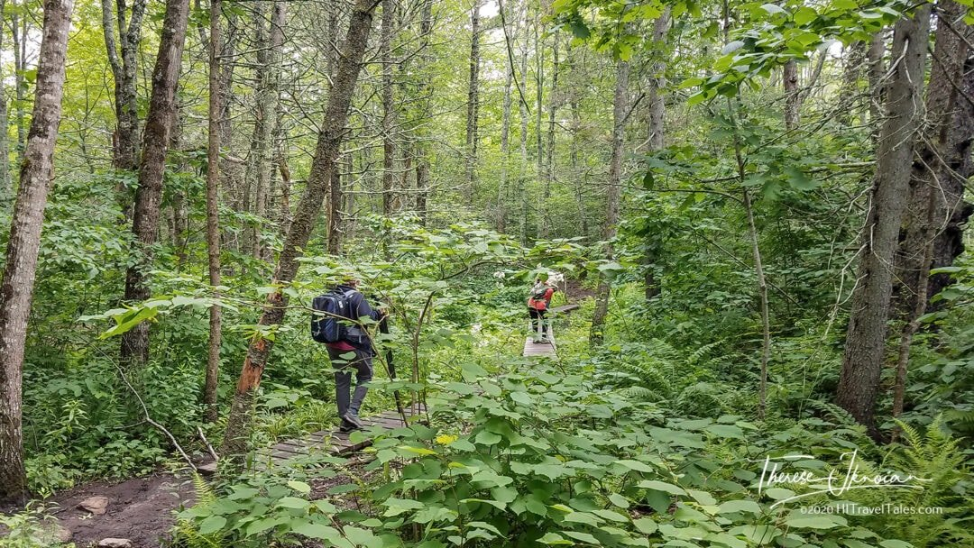 Coastal Maine Laverna Preserve Hike