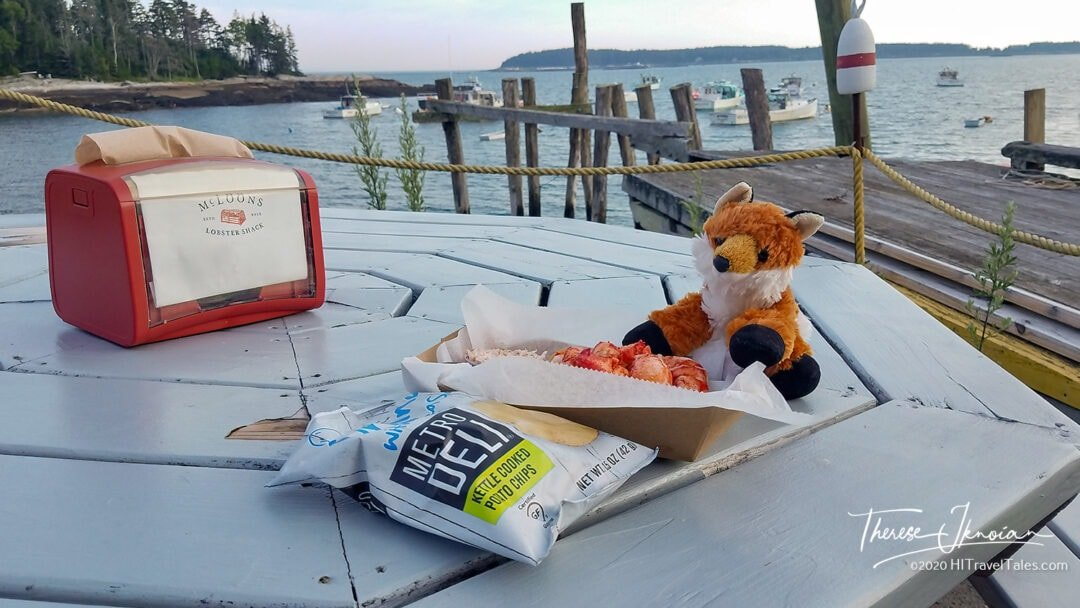 Coastal Maine Road Trip Lobster Fox Fury