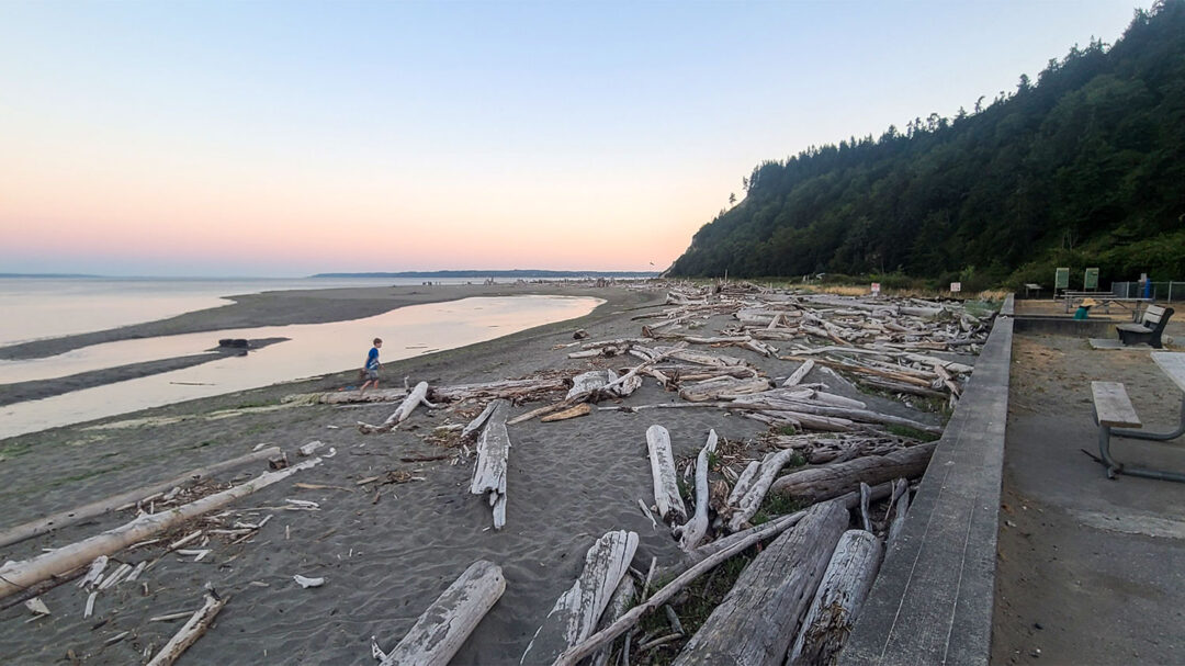 Double Bluff Beach Whidbey Island