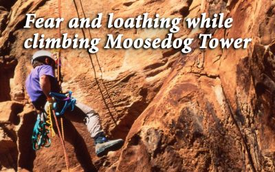 Fear and loathing while climbing Moosedog Tower