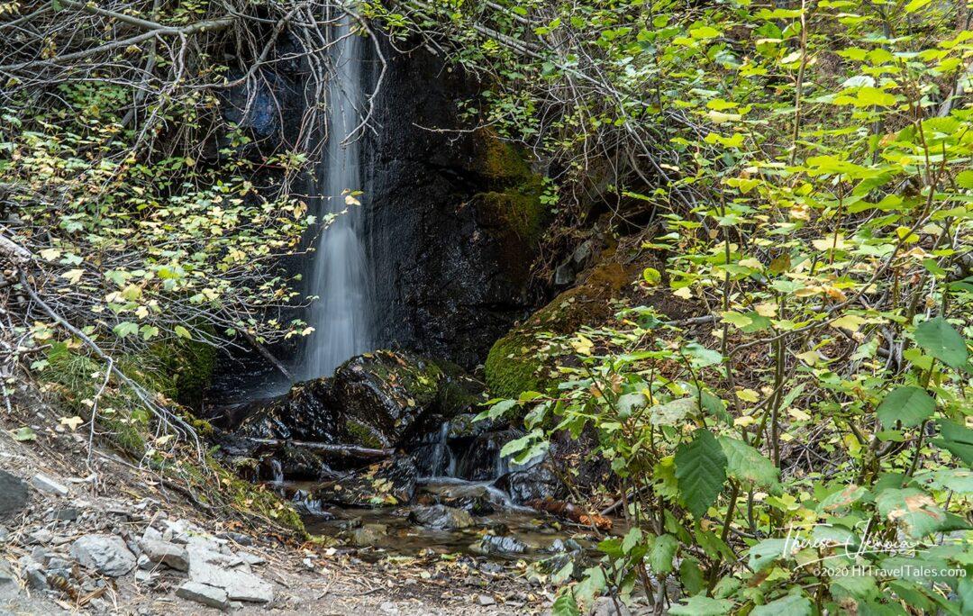 Genoa Loop Waterfall Hike