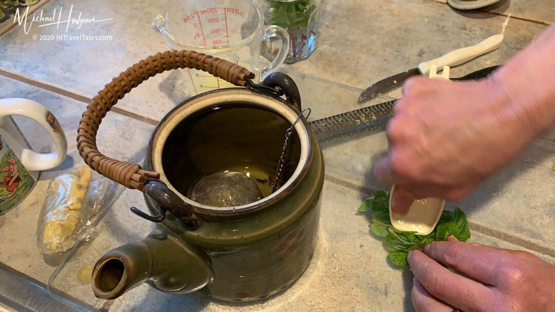 Ginger Tea Lemon Mint Muddle