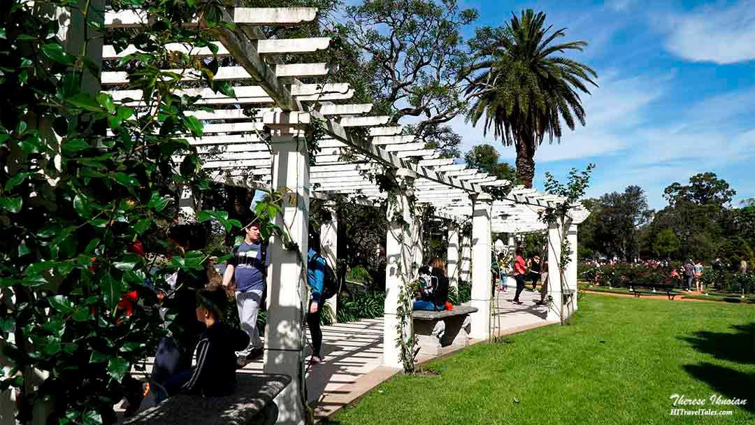 Rose garden park in Buenos Aires.