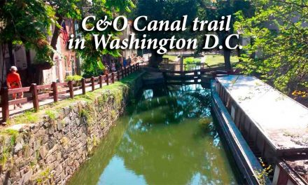 C&O Canal trail in Washington D.C., a recreational wonder