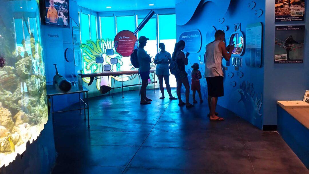 Eco Discovery Center Key West