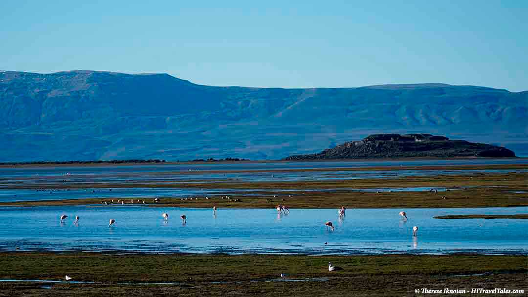 Best of Patagonia lake preserve with flamingos