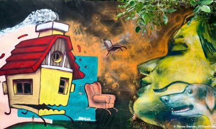 Amazing street art in Salta captures the imagination
